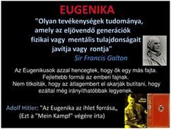 Vajda Miklós: Mengele unokái