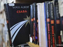 Román ügyészség: Wass Albert irodalmi munkássága nem esik a háborús bűnösök kultuszát tiltó törvény