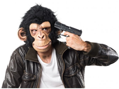 Vajda Miklós: Amerikai kutatók bejelentették az ember és a majom keveredését