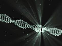 Génszerkesztés: Két összeegyeztethetetlen világkép feszül egymásnak