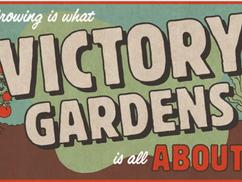 Ha karanténba vagy zárva, ültess győzelmi kertet!