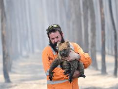 Így sodorta a katasztrófa szélére a zöld baloldal Ausztráliát
