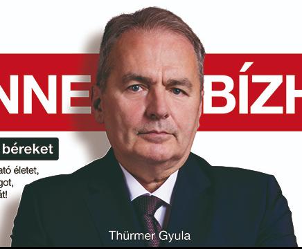 Thürmer Gyula