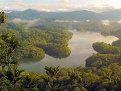 Amazonas-szakértő: Nem a Föld tüdeje az égő esőerdő