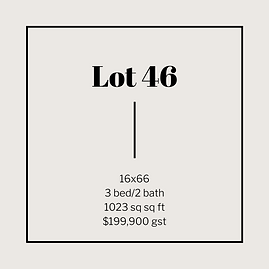 lot 46.png