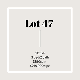 lot 47.png