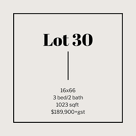 lot 30.png