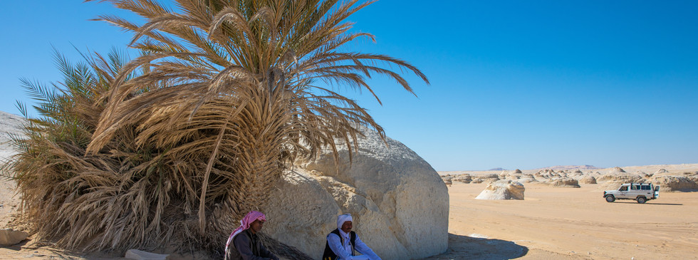 Пустынные кочевники