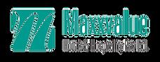 Maxx Value Logo.png