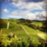 Paesaggi delle Langhe Piemonte