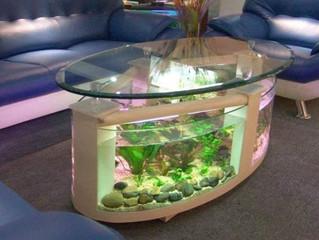 Decoração com aquários para decorar a casa