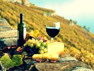Enoturismo - Quais vinhos harmonizam com o turismo?