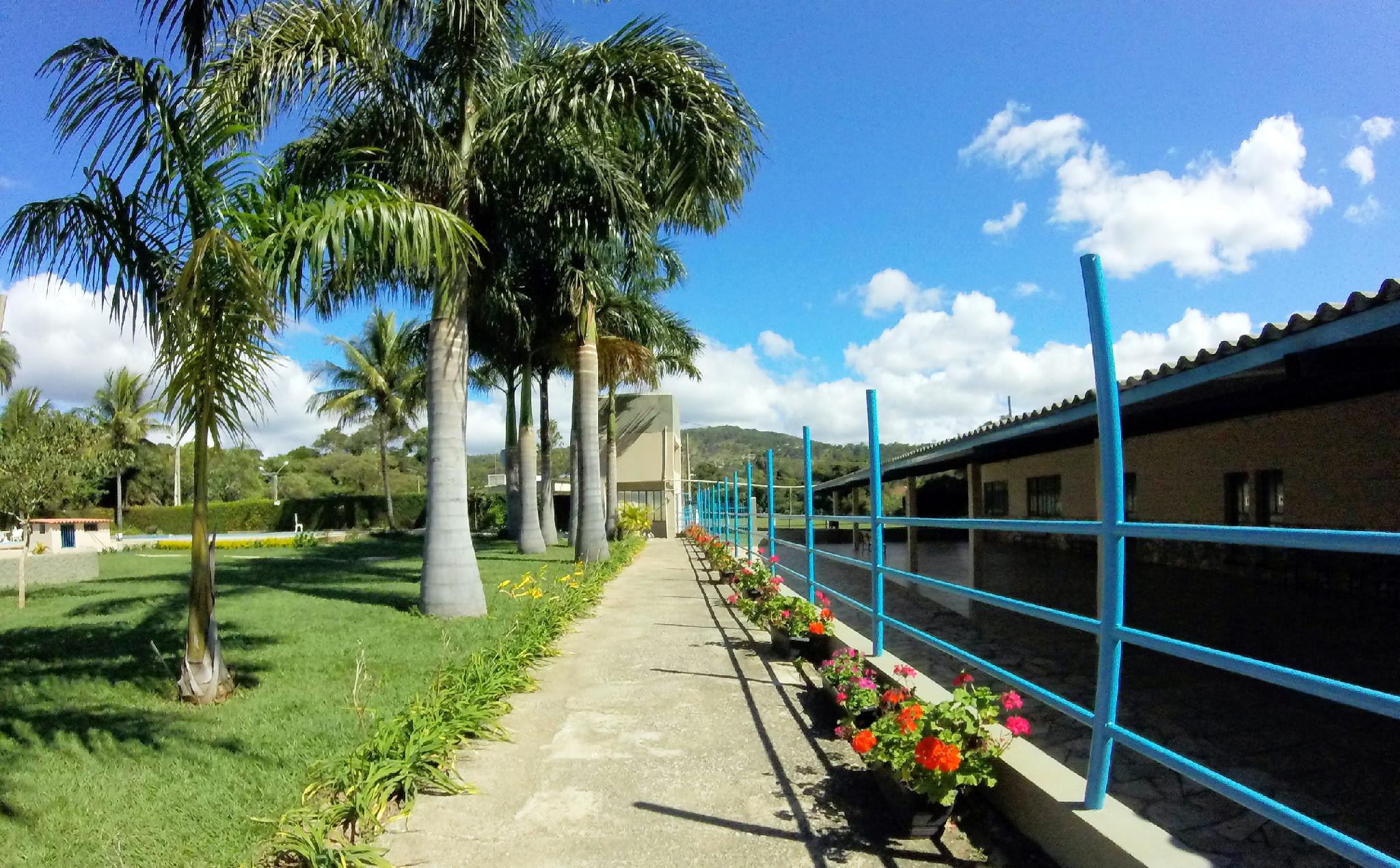 Jardim - Sítio para alugar