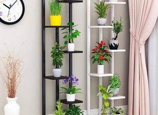 Dicas de estantes para decoração do jardim da varanda