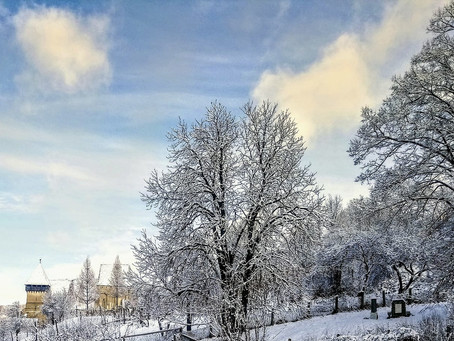 Work remotely this winter