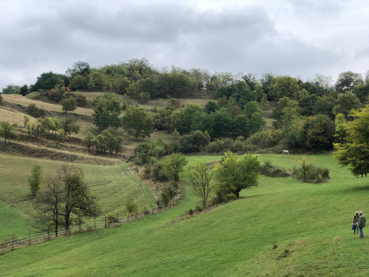 Pasture above the village