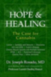 hope and healing book