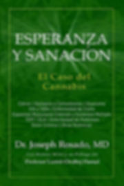 hope and healing book spanish version
