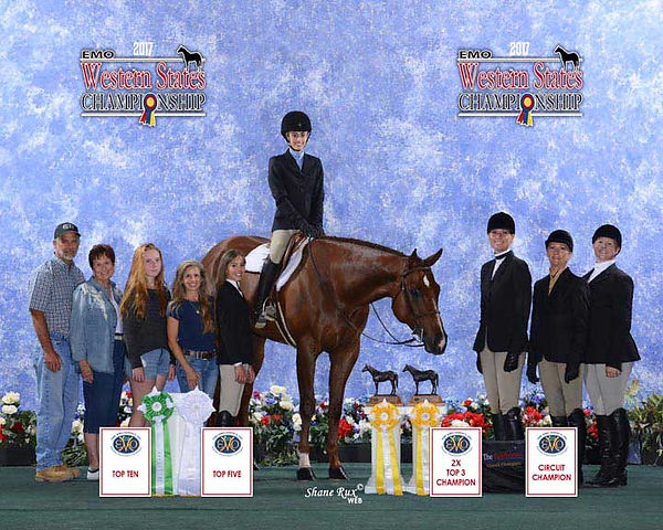 carter horse three.jpg