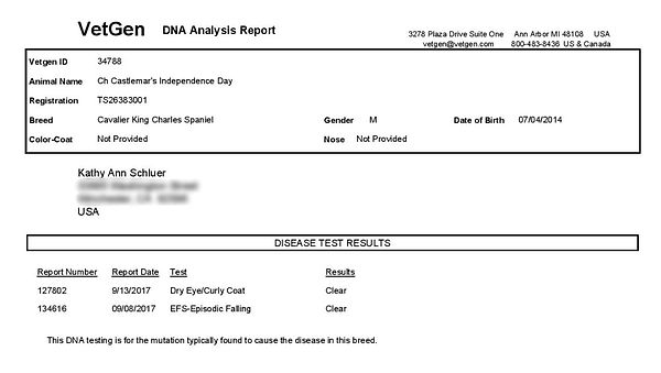 indy dna deccefs pdf_edited.jpg