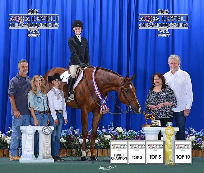carter horse one.jpg