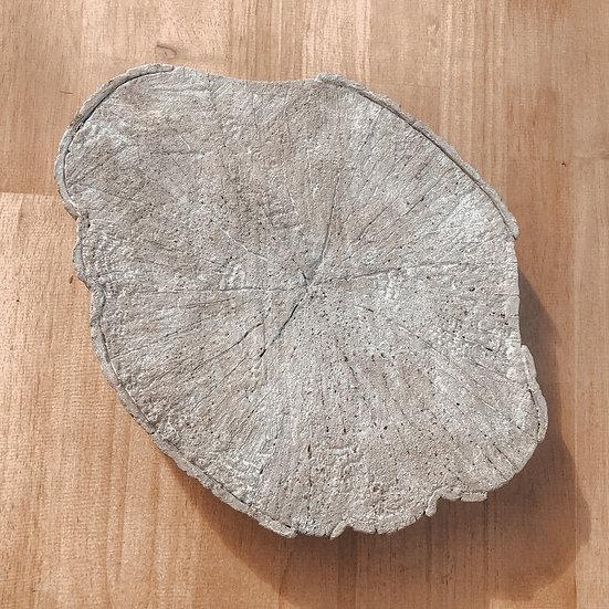 Presenteerplank betonlook