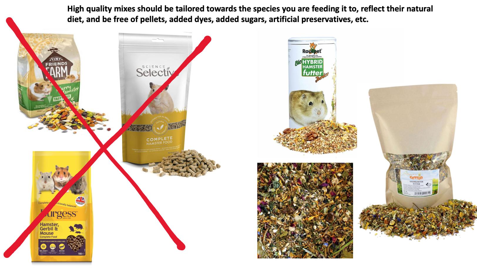 hamster fresh food diet