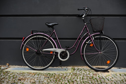 "Citybike  Sparta 28"", 5-speed, frame size 53 cm"