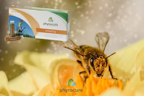 Phytocure -Vitality - Koninginnebrij - B