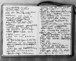 Tagebuchauszüge