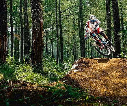 bike rental.jpg