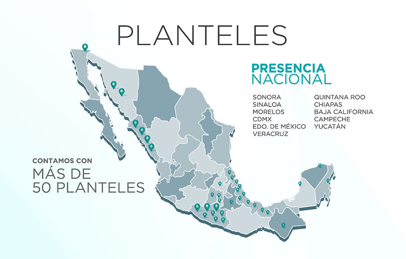 PLANTELES.jpg