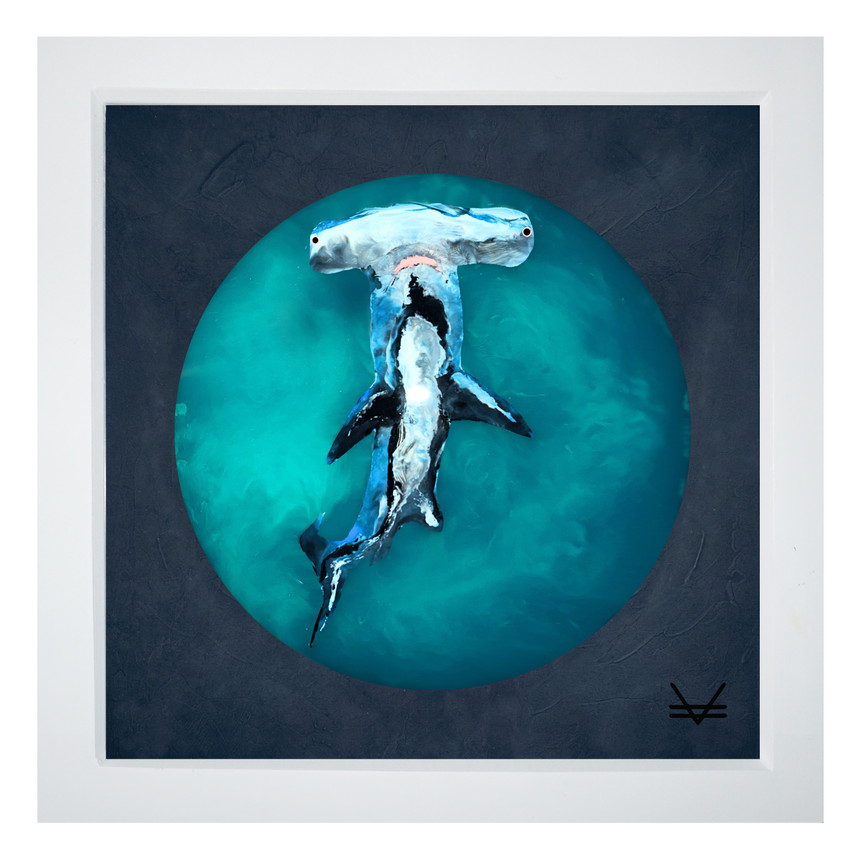 Nailed It... (Hammerhead Shark)