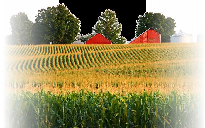 Farm Fade.png