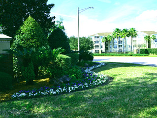 Landscaping Fleming Island FL