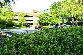 Trimac Outdoor Landscaping Jacksonville fl