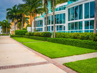 Landscaping Palm Beach, Indian River and Broward Counties