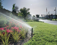 Trimac outdoor commercial lawn service jacksonville f