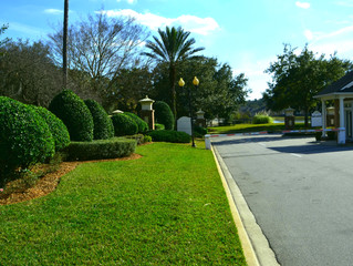 Landscaping Nocatee & Ponte Vedra Beach fl, Beautifully!