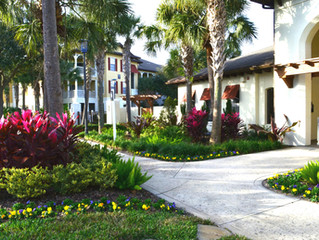 Landscaping Ponte Vedra Beach & Nocatee fl