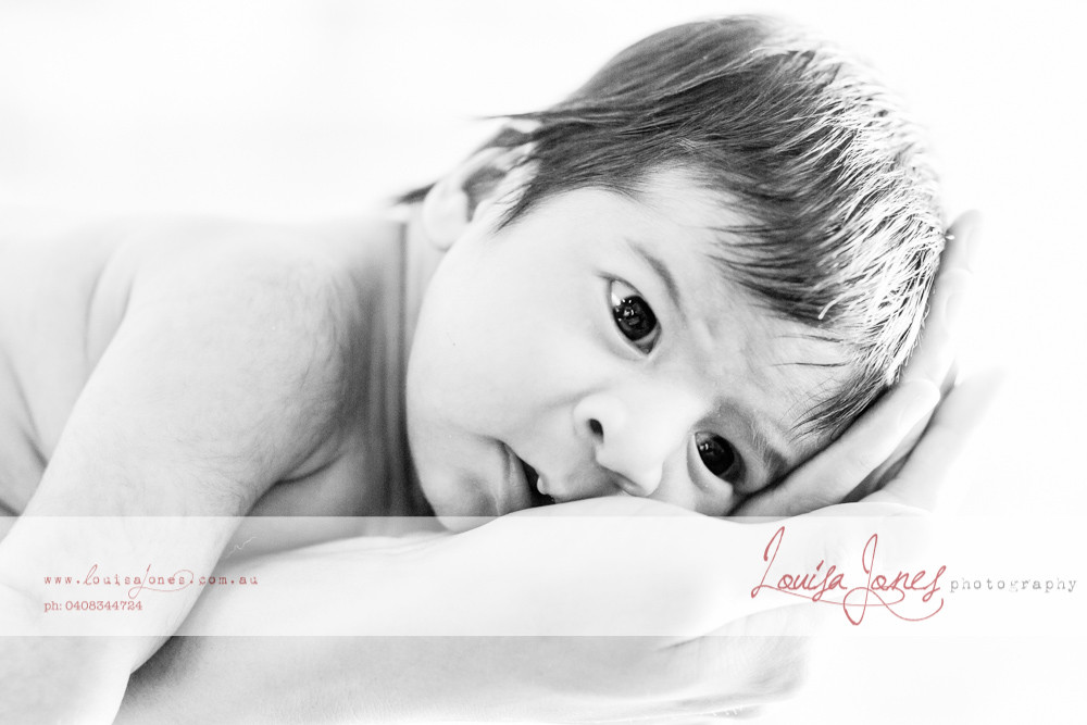 ljp l436 -Edit bwGeelong Baby Photography.jpg