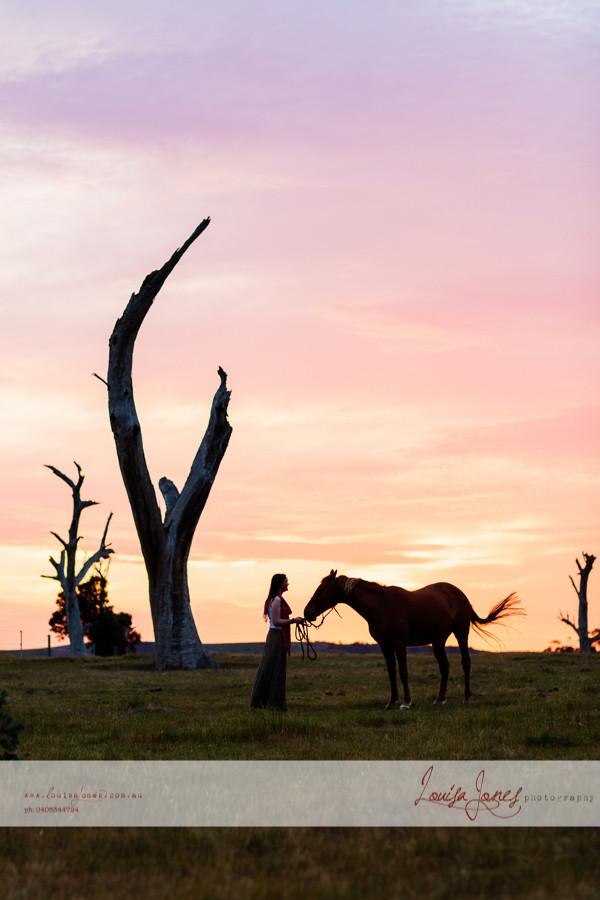 Horse Photography Bacchus Marsh 20.jpg