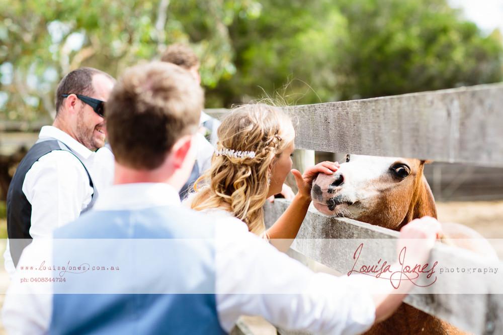 Geelong Wedding Photographer 190.jpg