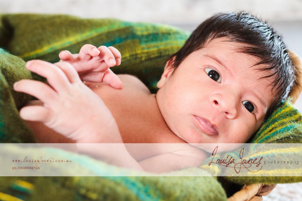 ljp l370_Geelong Baby Photography.jpg