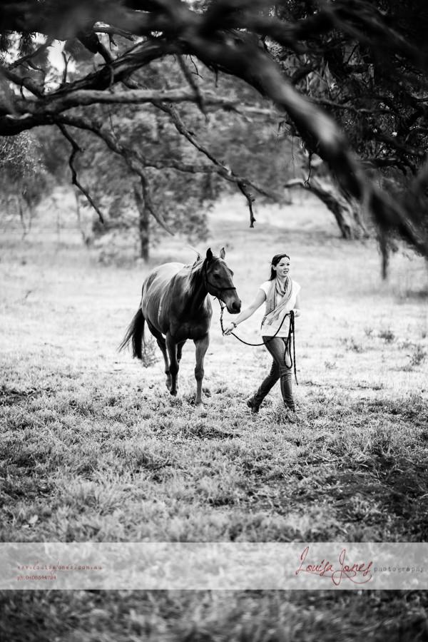 Horse Photography Bacchus Marsh 3.jpg