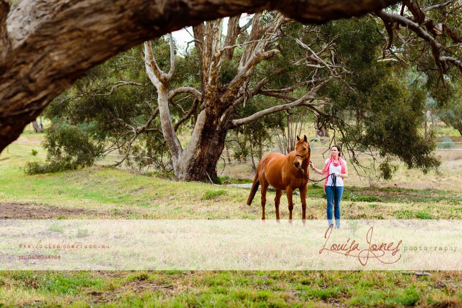 Horse Photography Bacchus Marsh 2.jpg