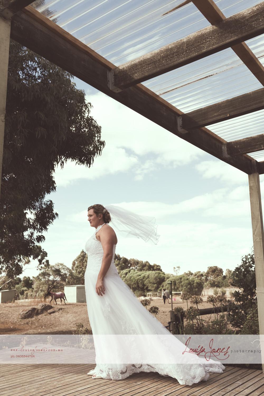 ljp bc6356  pvp Geelong Wedding Photography.jpg