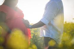 Canola Fields Pregnancy