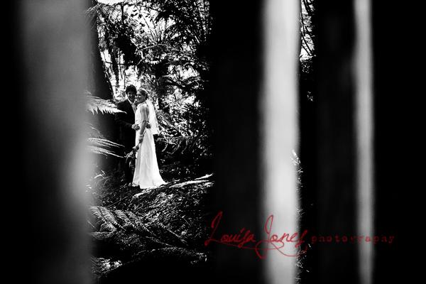 Wedding Photographyat Lyrebird Falls