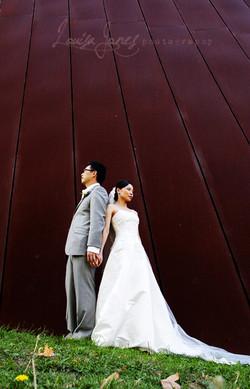 Melbourne Museum Wedding